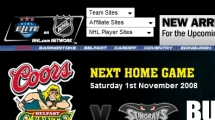 WordPress showcase belfastgiants.com