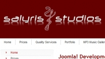 Joomla showcase salyris.com